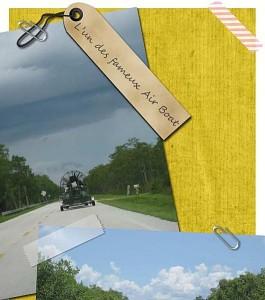 Souvenirs de Floride : les Everglades