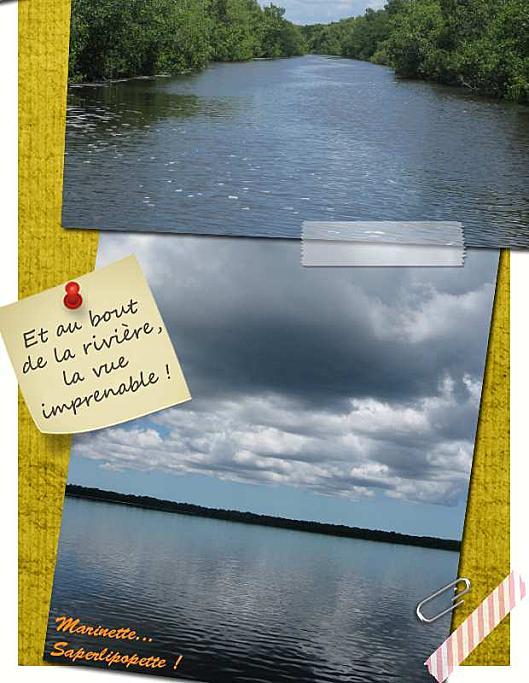 Floride Everglades1-2