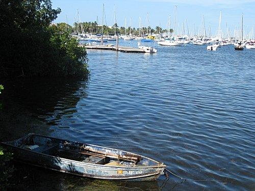 Floride miami coconutgrove1