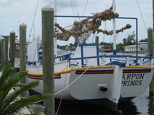 Floride tarponsprings3