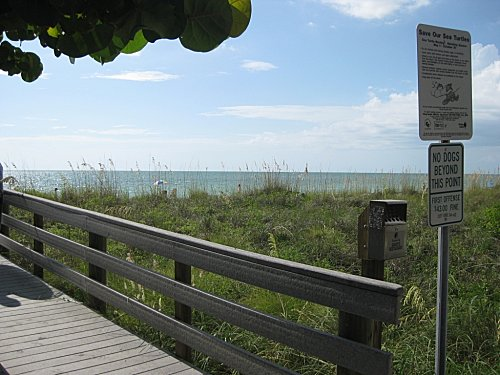 floride clearwater2