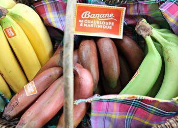 banane_guadeloupe_martinique