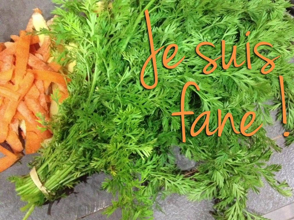 Je suis fan e marinette saperlipopette blog maman - Cuisiner fanes de carottes ...