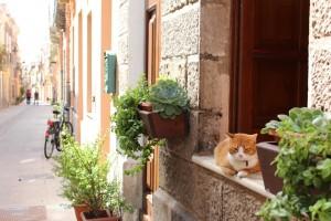 [Sardaigne] Cagliari et ses ruelles hautes en couleurs !