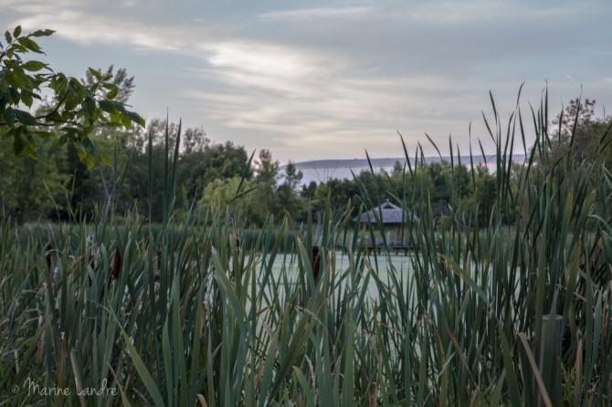 Montreal-pointe-prairies