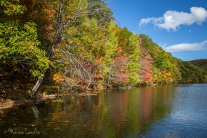Parc Mont Saint Bruno, et jolies couleurs d'automne [Montreal]