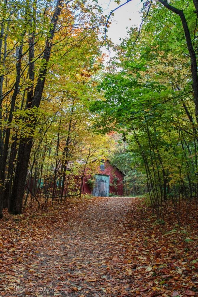 Saint-bruno-montreal-automne