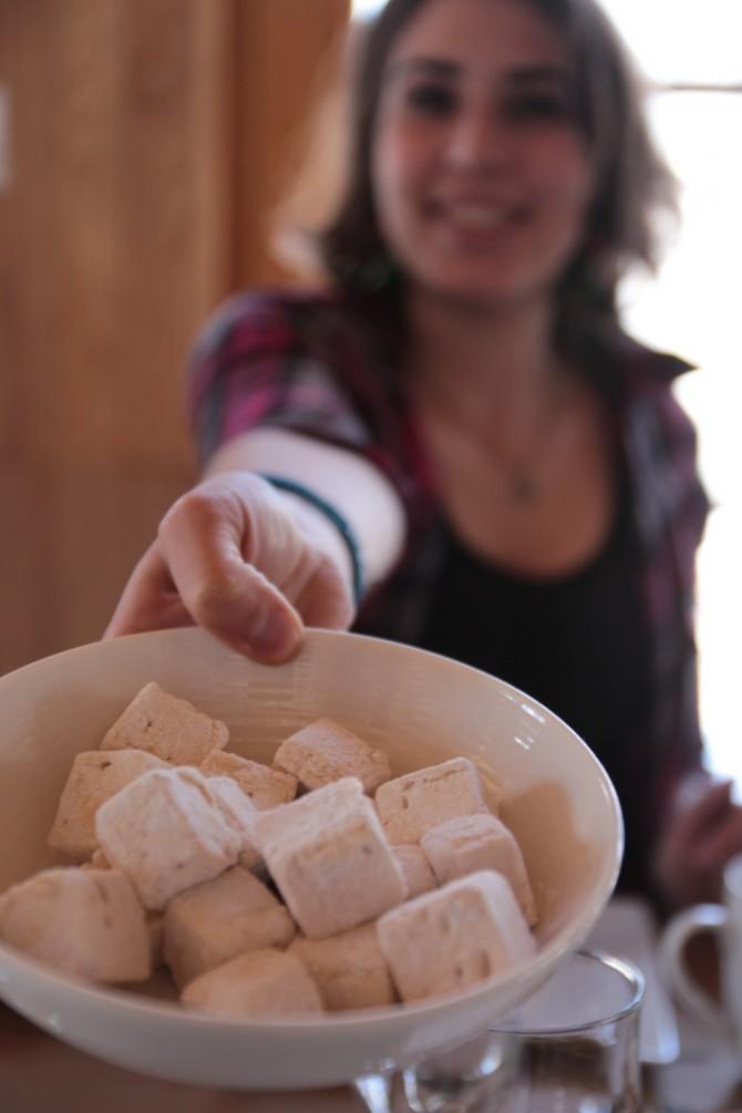 Cabane-sucre-erabliere-portes-fer