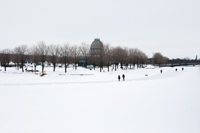 Montreal-hiver-blanc