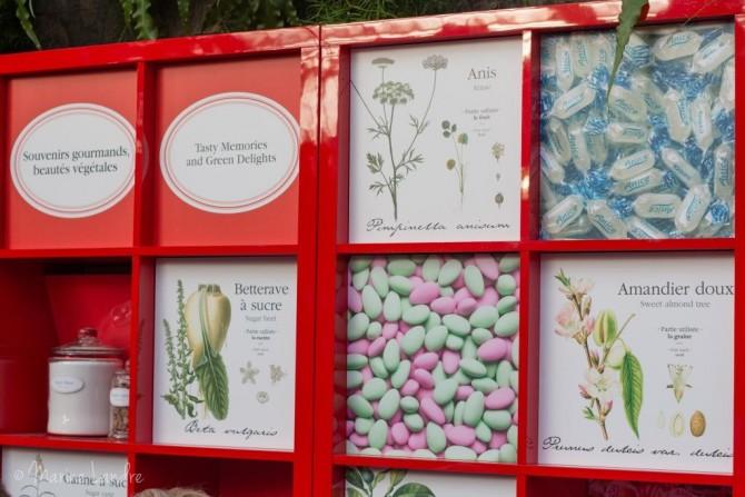 serres-jardin-botanique-montreal