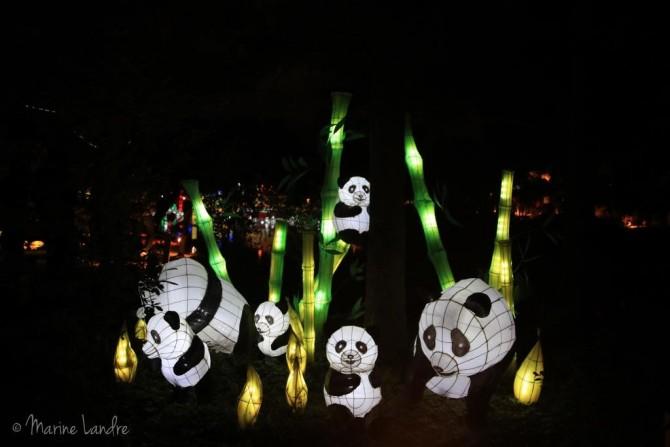 Les lanternes du jardin botanique de montr al marinette for Blythe le jardin de maman