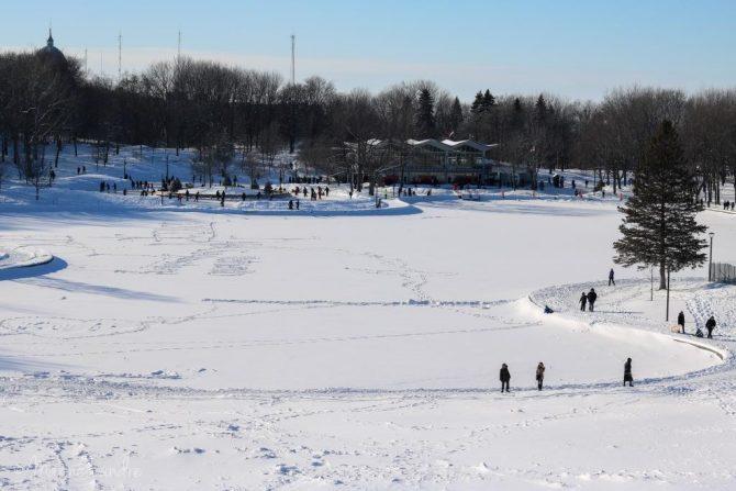 MontRoyal-hiver