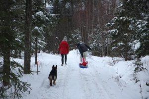 Première luge et autres bonhommes de neige