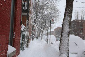 Une bonne bordee de neige à Montreal avec Stella !