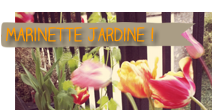 Catgorie Jardin