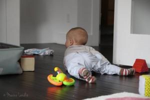 Mister Caribou de 6 à 9 mois [Les indispensables]